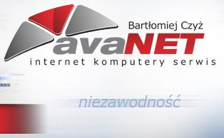 Avanet Internet